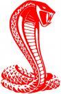 Cobra sticker 22